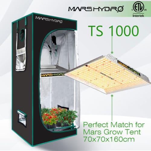 Grow weed Mars-Hydro TS1000 Combo South Africa