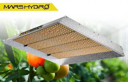 Mars-Hydro Quantum Board